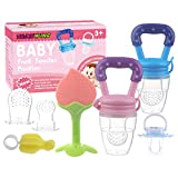 Baby Fruit Feeder Pacifier (2 Pack) -Think Wing