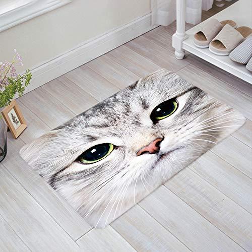 (Prime Leader Doormats for Entrance Way Indoor Cat Amber Pupil Welcome Mats 16