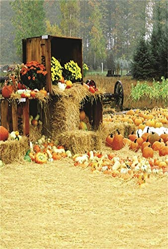 LFEEY 3x5ft Fall Farm Harvest Backdrop Piles of Pumpkins Rustic Haystack Photography Background Autumn Straw Bales Hay Rural Crops Countryside Farmland Barn Halloween Thanksgiving Photo Studio Props