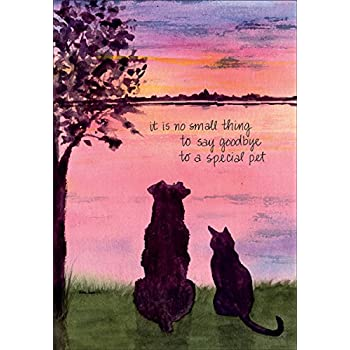 amazon com pet loss sympathy greeting card dog and cat silhouette