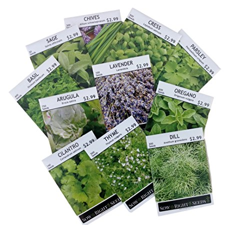 Sow Right Seeds - Non GMO Heirloom Culinary Herb Seed Collection - Arugula, Basil, Chives, Cilantro, Cress, Dill, Lavender, Oregano, Parsley, Sage & Thyme; Full planting instructions; Easy to grow - Sage Herb Plant