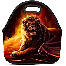 Qeksow Handbags Tote with Zipper Magical Fire Lions Creative Printed Lunch Tote for Children,for Women,Adults,Kids,Girls,and Teen Food Bag