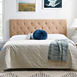 LUCID Upholstered Mid-Rise Headboard with