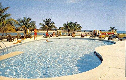 Key Largo Florida Ocean Reef Country Club Pool View Vintage Postcard K87272