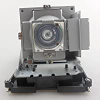 FI Lamps Original Projector Lamp BL-FS300C for OPTOMA EH1060/TH1060P/TX779P-3D