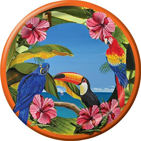Polynesian Parrot Party 7-inch Paper Plates 8 Per Pack  sc 1 st  Amazon.com & Amazon.com: Polynesian Parrot Party 7-inch Paper Plates 8 Per Pack ...