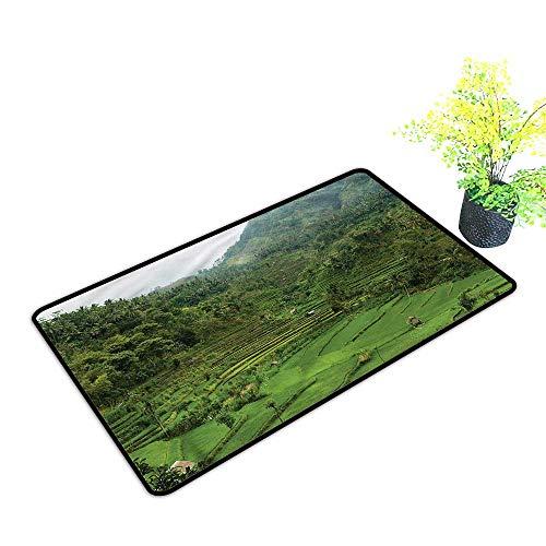 Door mat Outdoor Waterproof Balinese,Asian Rice Paddies Non-Slip,H17xW29 inch