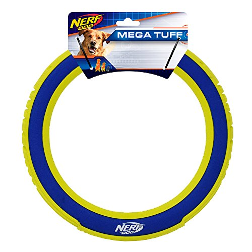 Nerf Dog 10in Nylon/Foam Megaton Ring - Blue/Green