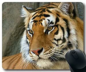 Animals-Bengal-Tiger Mousepad,Rectangle Mouse Pad by ruishername