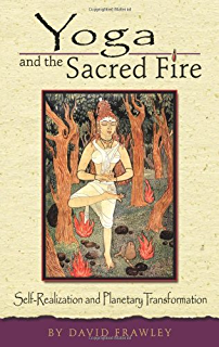Amazon vedantic meditation lighting the flame of awareness yoga and the sacred fire self realization and planetary transformation fandeluxe Epub