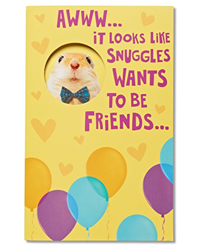 American Greetings Funny Hamster Birthday Card