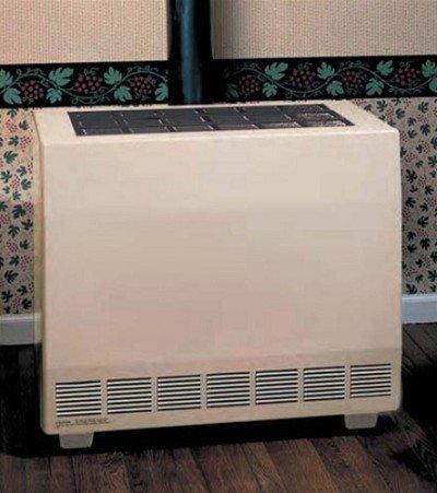 Empire Closed Front Room Heater Liquid Propane 65000 BTU