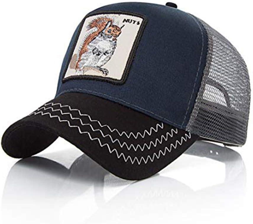 Ss - Gorra de béisbol - para hombre ardilla Talla única: Amazon.es ...