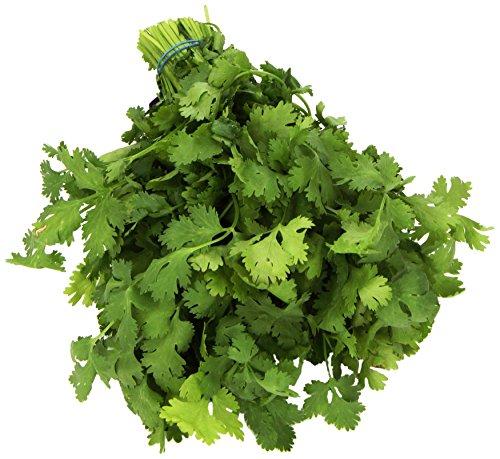 organic-cilantro-1-bunch