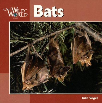 Bats (Our Wild World)