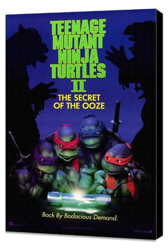 Amazon.com: Teenage Mutant Ninja Turtles 2: The Secret of ...