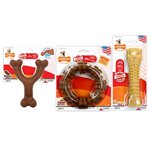 Nylabone Power Chew Extreme Chewing Power Chew Customer Favorites Dog Chew Toy Bundle Bison & Flavor Medley & Peanut Butter Giant