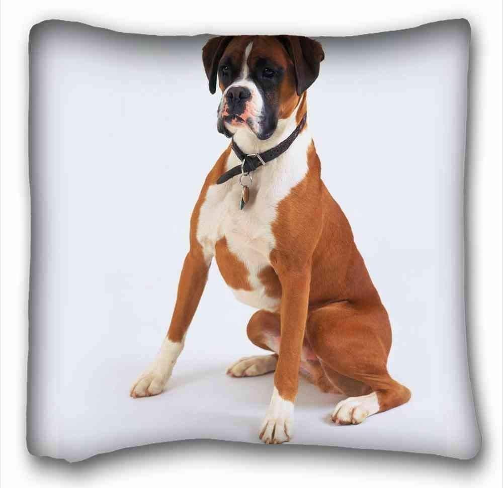 Dana34MaloryCustom - Funda de Almohada para Perro Boxer o Perro (tamaño 40 x 40 cm): Amazon.es: Hogar