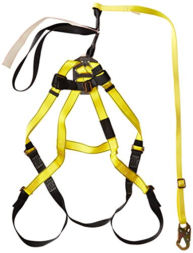 Mesa Safety 10077723 Workman Harness and Lanyard Aerial K...
