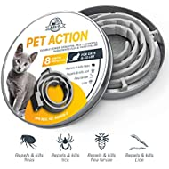 ELZU.US [New 2018 Effective] Flea and Tick Collar for Cats – 8 Months Full Protection – Best Prevention Medicine   Natural Flea Control for Your Cats