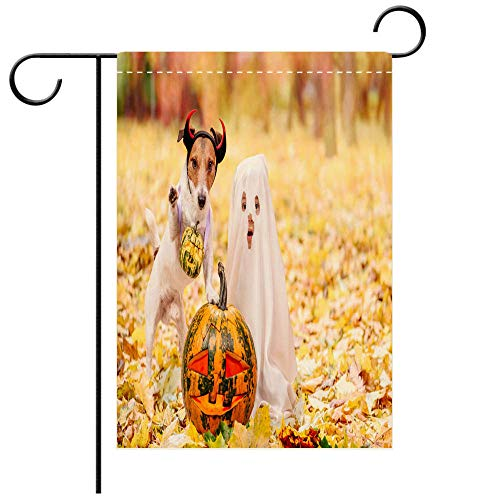 BEICICI Custom Personalized Garden Flag Outdoor Flag Kid and Dog Dressed in Halloween Costumes with Jack o Lantern Pumpkins Best for Party Yard and Home Outdoor Decor -