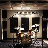 "Auralex Acoustics GeoFusor Sound Diffusor, 4"" x"