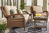 Hampton Bay Beacon Park Steel Wicker Outdoor Sofa with Toffee Cushions