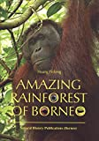 img - for Amazing Rainforest of Borneo book / textbook / text book