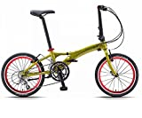 Dahon Visc D18 Appletini Folding Bike Bicycle