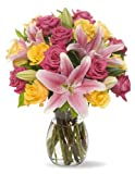 Best Flowers - Benchmark Bouquets Big Blooms, With Vase Review