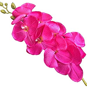 jiumengya 5pcs Fuchsia Color Phalaenopsis Butterfly Moth Orchid 8 Flower Heads Orchids 105cm Long for Wedding Decorative Artificial Flowers (Fuchsia) 70