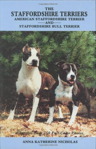 American Staffordshire Terrier Dogs - 7