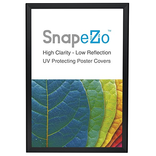 "SnapeZo Poster Frame 20x30 Inches, Black 1.25"" Aluminum Profile, Front-Loading Snap Frame, Wall Mounting, Professional Series"