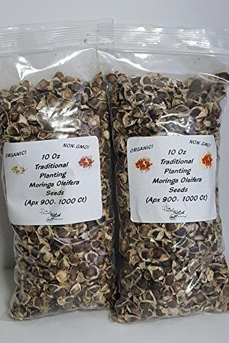 2-10 Oz Moringa Oleifera Malunggay Drumstick Seeds (APX 900-1000 Seeds per Bag) Paisley Farm (2)