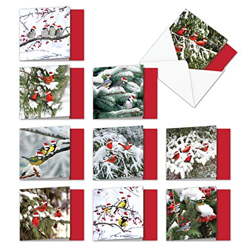 (10 Boxed & Assorted 'Christmas for the Birds' Holiday Cards W/Envelopes (4