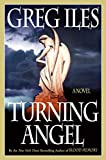 Turning Angel: A Novel (Penn Cage Book 2)