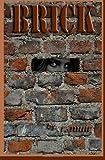 Brick, R. muir, 1482631466