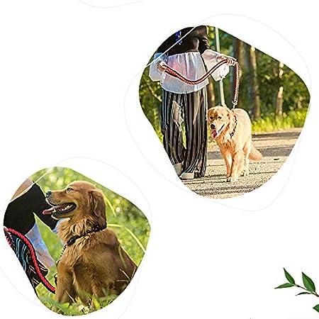 Lzrzbh Suministros para Mascotas Cadena De Perro Mediana Grande ...