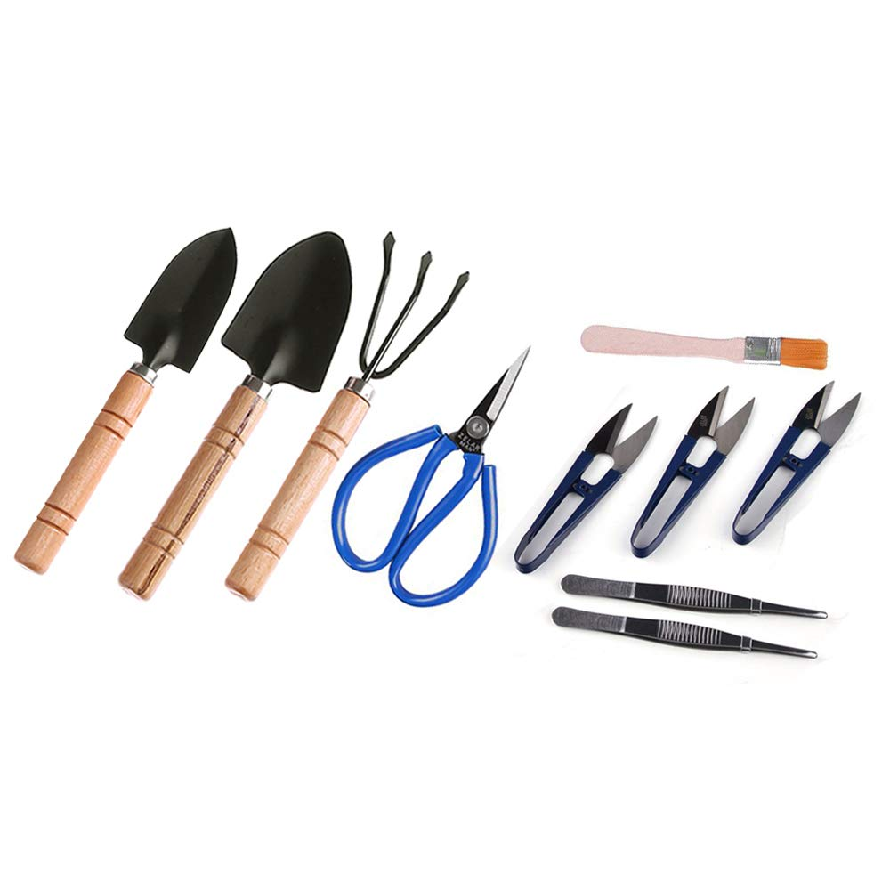 SWISSELITE Bonsai Set 10 Pcs-Mini Bonsai Tree Growing Kits for Bonsai Pruning,Bonsai Tools Accessories,Including Wooden Rake,Spades,Tweezers,Bamboo Brush and Pruning Shears in a Leather Storage Holder SHANGHAI LG IMP & EXP CO. LTD