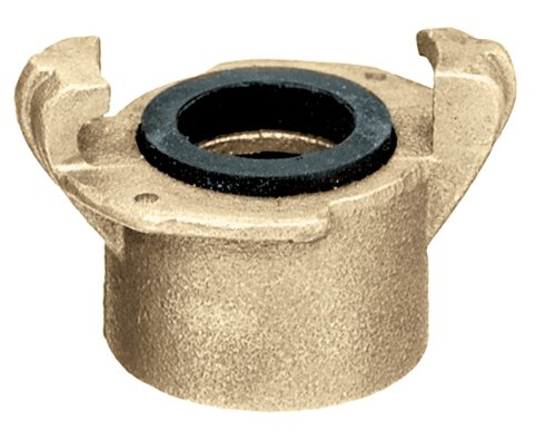 ick Disconnect Couplings x Female NPT, Brass, 1 1/4