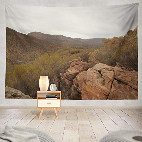 Deronge Tapestry Wall Hanging South Australia with Autumn and Australian Tapestry Wall Art Decor 60x80 Inch Wall Tapestry for Men Bedroom Home Decor Decorative Tapestry Dorm -