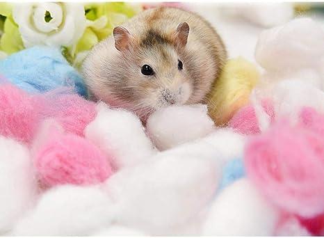 KOBWA - Calentador de Cama para Jaula de Animales pequeños, algodón, 1 Paquete/Juego de Relleno de Bola de algodón para hámster, ratón, Chinchilla: Amazon.es: Productos para mascotas