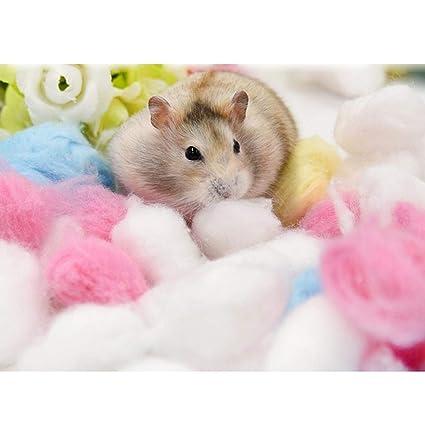 KOBWA - Calentador de Cama para Jaula de Animales pequeños, algodón, 1 Paquete/