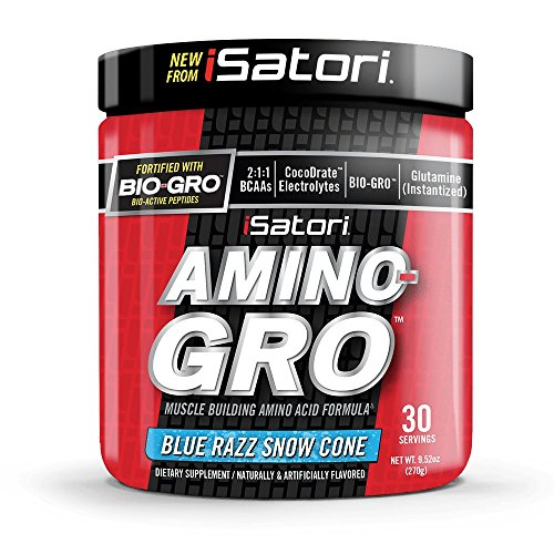 iSatori Amino-GRO Branched Chain Amino Acid Formula with Glutamine for Workout Performance, Muscle Growth, Hydration and Fast Recovery – BCAA – Blue Razz Snow Cone – 30 Servings Review