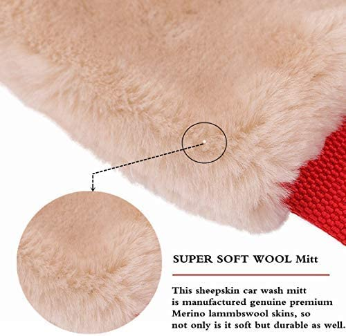 Short Pile Mitt Soft Smooth Scratch /& Lint Free Scrubber High Density Wool Glove Car Wash Detailing Mitt for Auto Truck Motorcycle Detail Office Home Glass SGCB 100/% Real Lambs Wool Car Wash Mitt