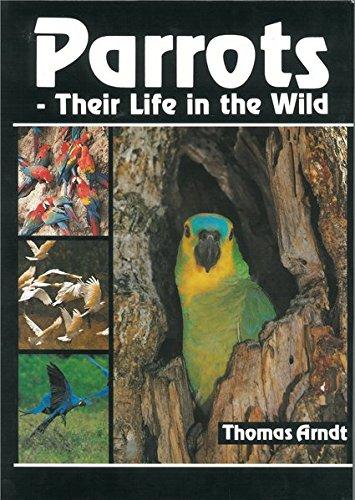 papageien-ihr-leben-in-freiheit