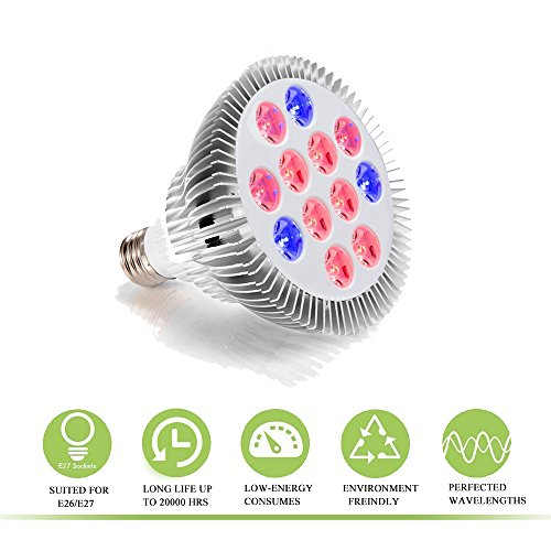 Best Grow Lights For Indoor Gardening - 6