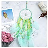MOVEmen Feather Light String LED Dream Girl Birthday Gift Baby Room Decor Room Hanging Ornament Holiday Decoration Lantern Wishing Light Party Night Light Star Light String Garden Decoration