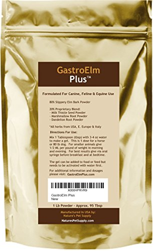 GastroElm Plus