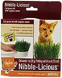 Petlinks Nibble-Licious Cat Grass Kit